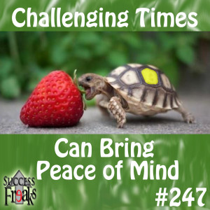 SF #247 - Challenging Times Can Bring Peace of Mind - ALBUM ART-AR