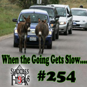 SF #254 - When the Going Gets Slow.... - ALBUM ART-AR